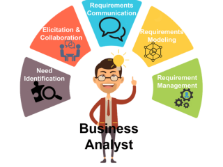 FRESHER BUSINESS ANALYST