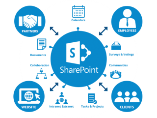 SharePoint Online and Office 365 Developer
